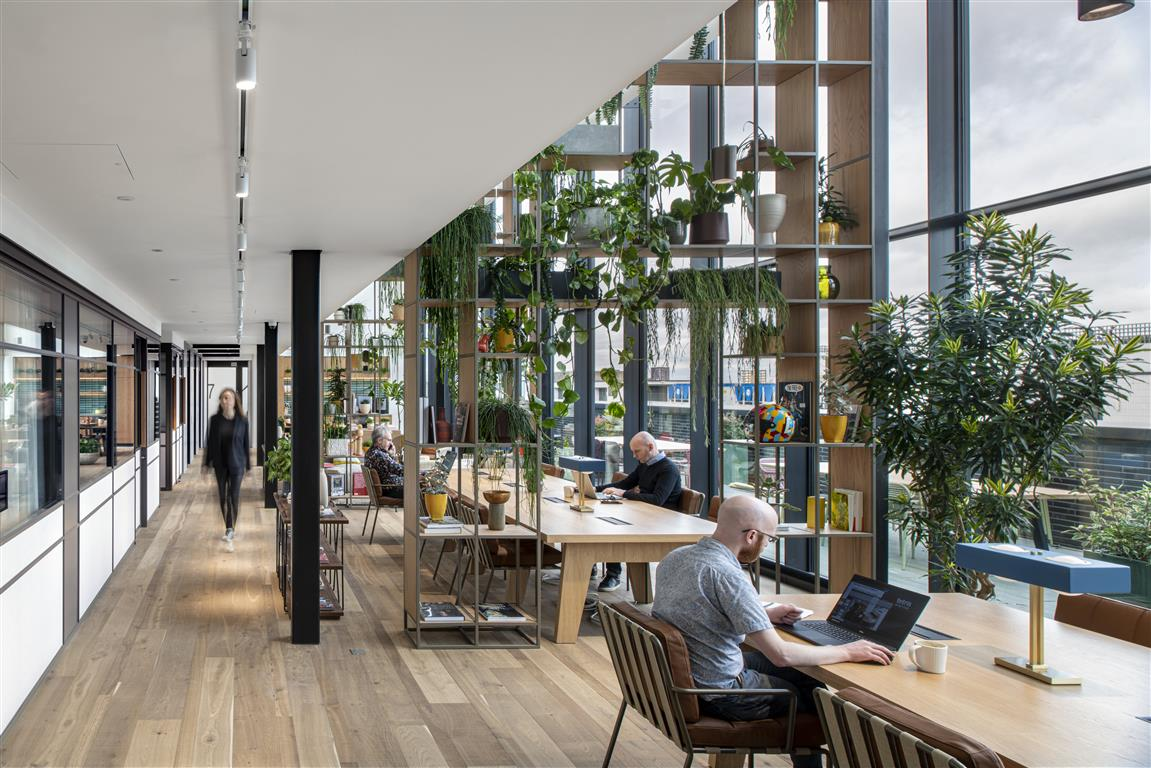 Hauts plafonds et lumière naturelle du jour, Fora, Arnold House, Londres, Royaume-Uni