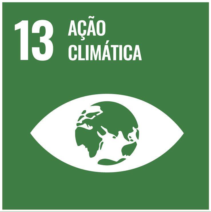 13 açāo climática